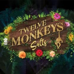 Twelve Monkeys NS